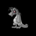 uc grey krawk